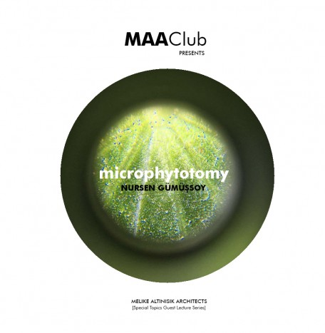 Microphytotomy